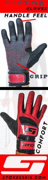 Stokes Raptor Gloves